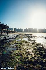 Abrazo Del Mar - Dec 2016