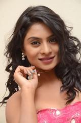 South Actress Deepika Das Hot in Pink Dress- Photos Set-6 (9)