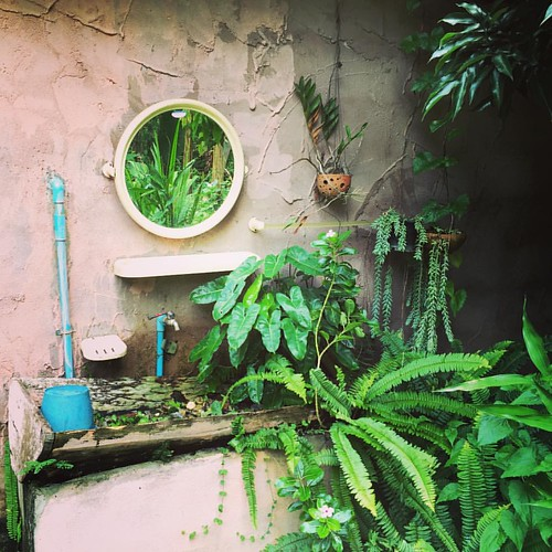 #Jungle #toilet  @ #ChangMai #Thailand  #thailoup #traveloup
