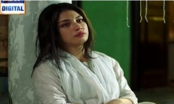 Main Mehru Hoon Episode 85 Full by Ary Digital Aired on 21st November 2016