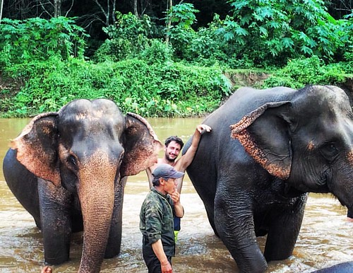 @philoup_d and the #Elephants  @ Maetaeng #Elephant #Camp #Jungle #ChangMai #Thailand  #thailoup #traveloup
