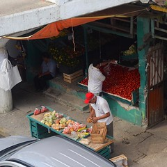That's a lot of tomatoes. Vendors in Tuxpan. #TheWorldWalk #travel #mexico #twwphotos