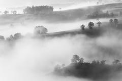 Nebbie d'autunno