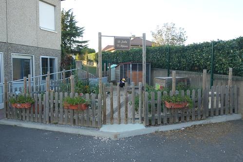 Pelico a apprécié le jardin de l'école, avec son lapin !
