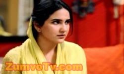 Maikay Ki Yaad Na Aaye Last Episode 102 Full by Geo Tv Aired on 29th November 2016