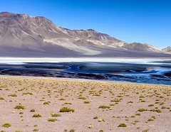Well, those were the most physically challenging ten days of my life. Here's what it looked like on day three: a salt lake at 14,000 feet in La Reserva Los Flamencos between Chile and Argentina. The water actually looks like quicksilver and if the air was