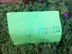 "2015 Primer dia en Benirredrá • <a style=""font-size:0.8em;"" href=""http://www.flickr.com/photos/128738501@N07/22436376759/"" target=""_blank"">View on Flickr</a>"