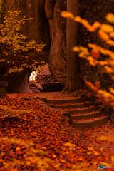 Sanspareil im Herbst-6
