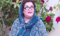 Bulbulay Episode 429 Full by Ary Digital Aired on 27th November 2016