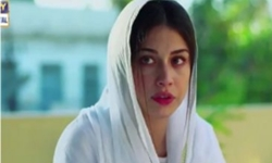 Main Mehru Hoon Episode 88 Full by Ary Digital Aired on 24th November 2016