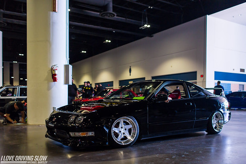 "ILDS HIN Tampa 2016-01 • <a style=""font-size:0.8em;"" href=""http://www.flickr.com/photos/63968896@N02/31348903406/"" target=""_blank"">View on Flickr</a>"