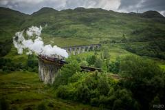 Hogwarts Express...
