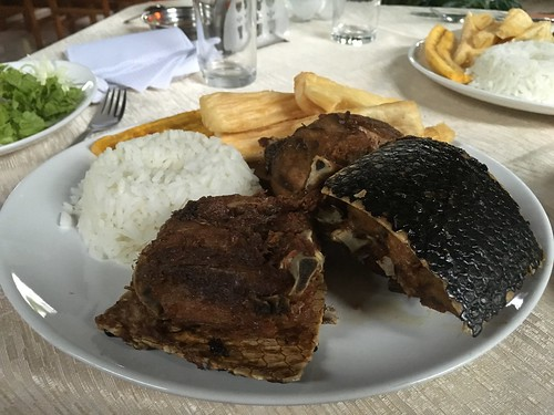 À Villa Tunari, nous avons vu et mangé du Tatou !