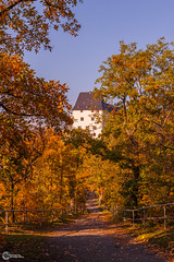 Herbst an der Saaleschleife-2