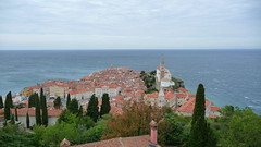 "Piran, Slovenia • <a style=""font-size:0.8em;"" href=""http://www.flickr.com/photos/39052554@N00/21929268179/"" target=""_blank"">View on Flickr</a>"