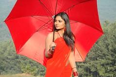 South Actress Deepika Das Hot in Red Sari Photos Set-5 (6)