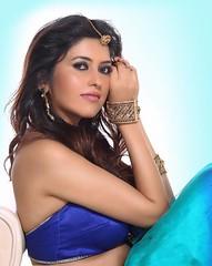 Bollywood Actress ANCHAL SINGH Photos Set-1 (32)