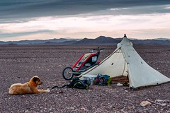 Day 587. Sav and I will be passing through our last Chilean town today, San Pedro de Atacama. From there it's up into the massive nature reserve Los Flamencos where there are volcanoes, salt lakes, and, of course, flamingos. I doubt there will be cell tow