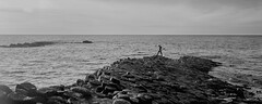 Man Vs Sea (At Giant's Causeway