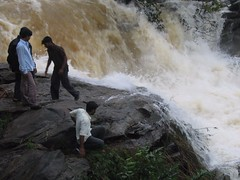 World Famous Jog Falls Photography By CHINMAYA M.RAO Set-1 (147)