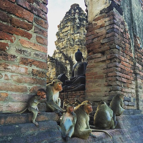 #Buddha  @ #PhraPrangSamYod #Lopburi #Thailand #monkeytown #Affenstadt #thailoup #traveloup