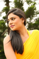 South Actress Deepika Das Hot in Yellow Sari Photos Set-2 (4)