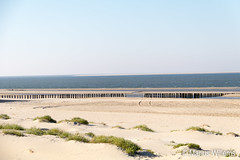 "Ameland • <a style=""font-size:0.8em;"" href=""http://www.flickr.com/photos/139061502@N06/30285735500/"" target=""_blank"">View on Flickr</a>"