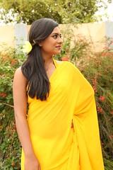 South Actress Deepika Das Hot in Yellow Sari Photos Set-2 (9)