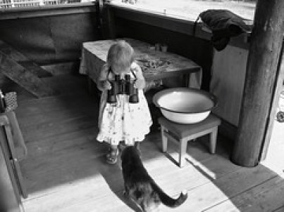 Important Lessons for Kids - I see cat