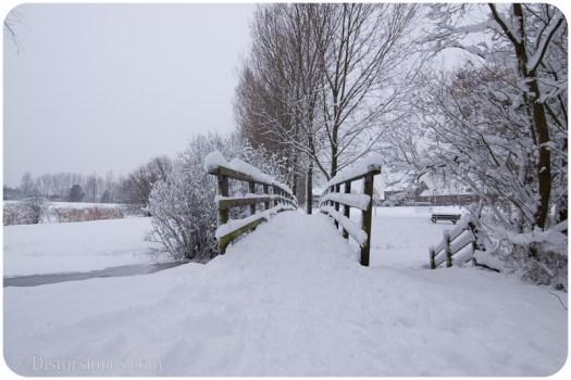 Puente sobre el canal helado