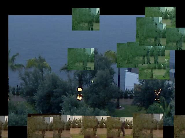 hugatree_screen_20110125_182932_screenFoliage_lights