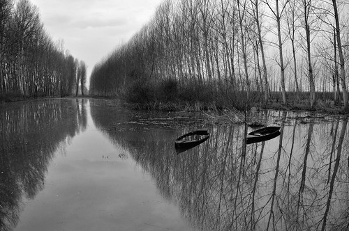 Vanishing reflection @Padule di Fucecchio