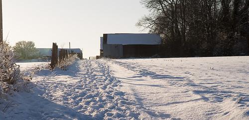 Wood Lane Farm