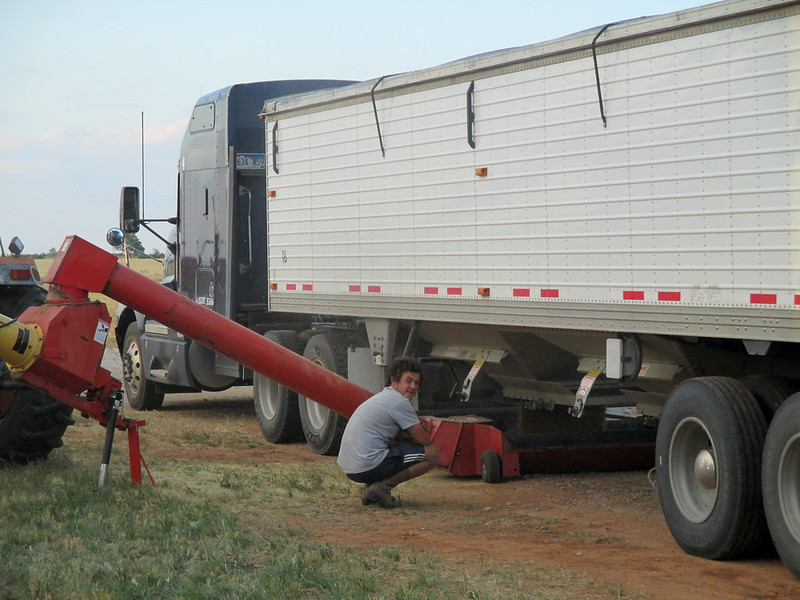 Theo watches his truck unloading into the auger JB