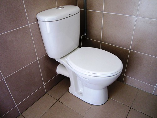 My new seat toilet