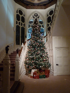 Christmas Tree in the Stair Well