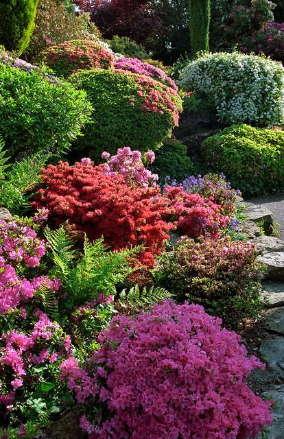 leonardslee landscape gardens