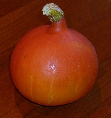 Japanese pumpkin from the organic fruit and vegetable shop by roslyn.russell
