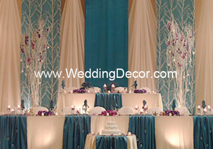 Blue Curtain Backdrop