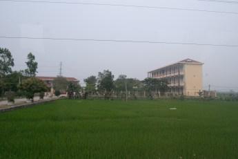 Reisfeld und Gebäude
