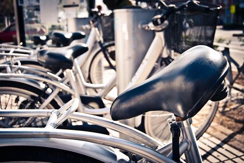 """133/365 """"nílliS"""" by Flickr Jiménez (Pedro Nog)"""