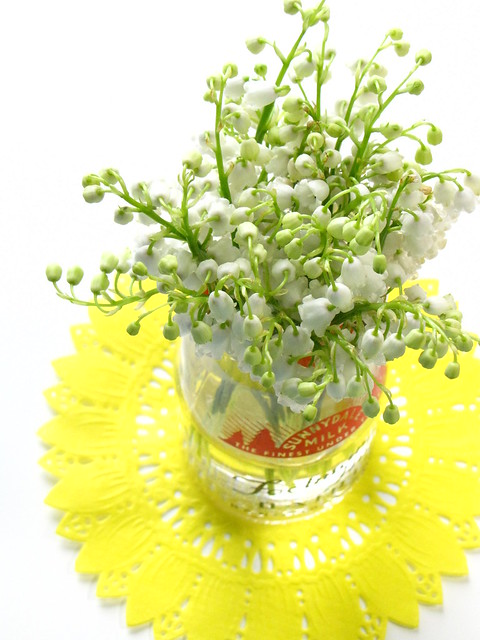 Lily of the Valley in A Milk Bottle