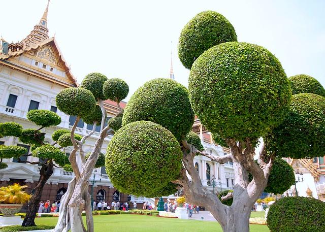 Bangkok ball