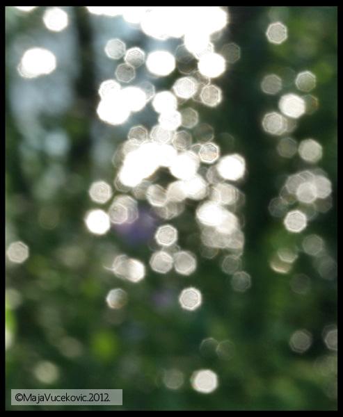 svetlost