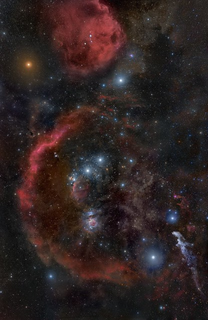 Number One Astronomy Picture of 2010: Orion from Head to Toe