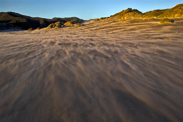 Sand Storm  von Robyn Carter