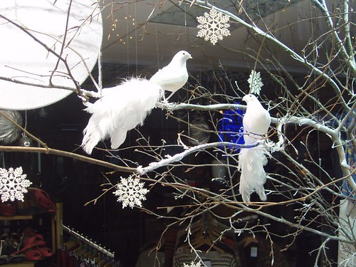 201012250229_Christmas-shop-window