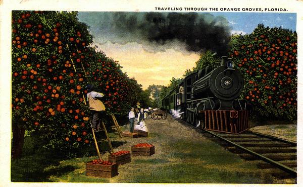 Florida Train Wrecks in Flickr Commons « Public Domain