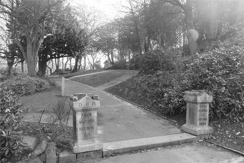 View towards Eastwood bird reserve, Cheethams Park
