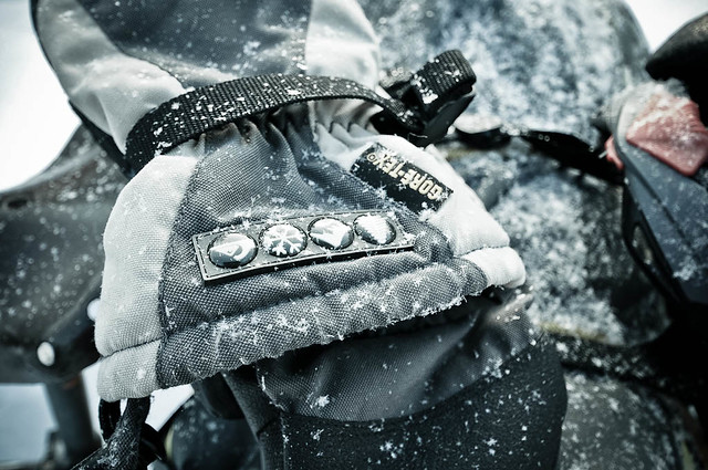 Snowy mitts
